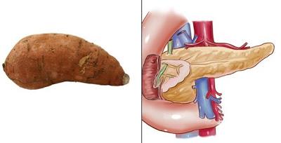 10Potato-Pancreas